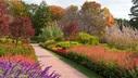 Flower Garden Walk